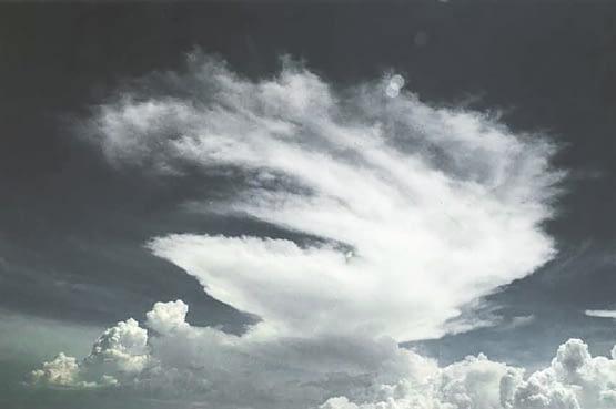 Alejandro Aguilera - Cerca del cielo - Ballerina